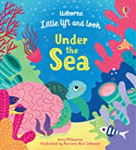 Image for Little Lift and Look Under the Sea